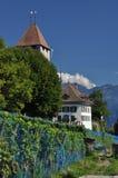 Castello medievale svizzero, Spiez Svizzera Fotografia Stock Libera da Diritti