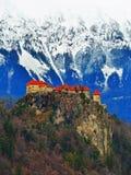 Castello medioevale dell'sanguinato di Immagine Stock