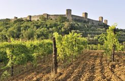 Castello Monteriggioni, Toscanië, Italië royalty-vrije stock afbeelding