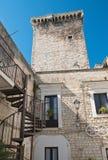 Castello normanno Rutigliano La Puglia L'Italia Immagine Stock