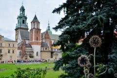 Castello reale Cracovia Fotografia Stock Libera da Diritti