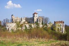 Castello Rudno - Polonia. fotografie stock