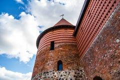 Castello storico di Kaunas immagine stock libera da diritti