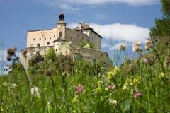 Castello Tarasp Immagine Stock Libera da Diritti