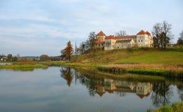 Castello in Ucraina occidentale Fotografie Stock