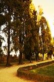 Castello, vintage hues, Conegliano Veneto Stock Image