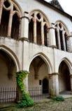 Castello Zvikov Fotografie Stock
