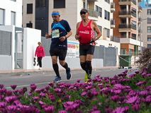Castellon, Испания 24-ое февраля 2019 бегуны во время гонки марафона стоковые фото