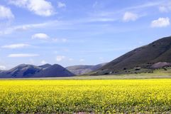 Castelluccio Royalty Free Stock Photo