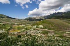 Castelluccio di Norcia - Умбрия - Италия Стоковые Изображения RF