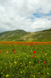 Castelluccio di Norcia  Stock Photo