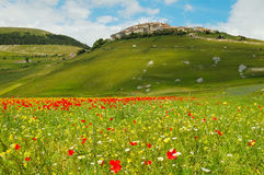 Castelluccio di Norcia. Castellucio di Norcia in Umbria Italy Royalty Free Stock Photo