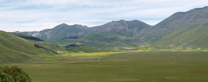 Castelluccio di Norcia. Cultivation of lentils Royalty Free Stock Photos