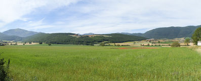 Castelluccio di Norcia. Cultivation of lentils Royalty Free Stock Photography