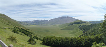 Castelluccio di Norcia. Cultivation of lentils Stock Image