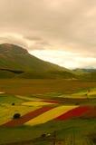 Castelluccio di Norcia meadow. Summer valley in Italy Castelluccio di Norcia Royalty Free Stock Photography