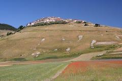 Castelluccio di Norcia/sikt Arkivfoto