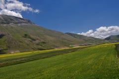 Castelluccio di Norcia - Umbria - Italien Arkivbild