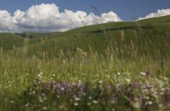 Castelluccio di Norcia - Umbrien - Italien Stockbild