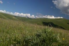 Castelluccio di Norcia - Umbrien - Italien lizenzfreie stockbilder