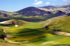 Castelluccio of Norcia Stock Photos