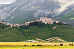 Castelluccio Of Norcia. Umbria, Italy Royalty Free Stock Photo