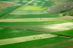 Castelluccio of Norcia, Umbria, Italy Royalty Free Stock Image