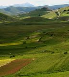 Castelluccio /spring landscape. Spring landscape captured near Castelluccio di Norcia - Umbria - Italy Royalty Free Stock Photo