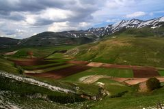 Castelluccio /spring landscape Royalty Free Stock Photography