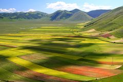 Castelluccio summer landscape. Summer landscape captured near Castelluccio di Norcia - Umbria - Italy Royalty Free Stock Photos