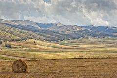 Castelluccio Umbra Italy landscape Royalty Free Stock Image