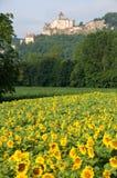 Castelnaud, France Stock Image