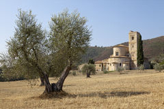 Castelnuovo dell'Abate Royalty Free Stock Photo