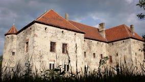 Castelo cinzento grande com telhado marrom Edifício velho da arquitetura video estoque