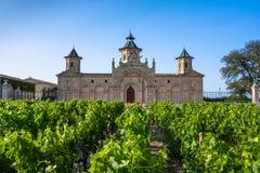 Castelo Cos D'Estournel, região do Bordéus, França Foto de Stock Royalty Free