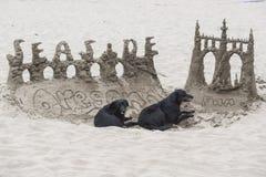 Castelo da areia com dois cães fotografia de stock
