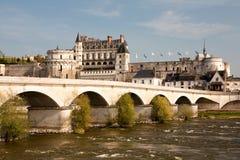 Castelo de Amboise Fotografia de Stock