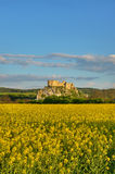 Castelo de Beckov foto de stock royalty free
