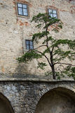 Castelo de Buchlov, CZ Imagens de Stock Royalty Free