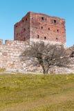 Castelo de Hammershus da ilha bornholm - Dinamarca Fotografia de Stock Royalty Free