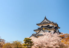Castelo de Hikone com céu azul, Shiga, Japão 1 Imagem de Stock Royalty Free
