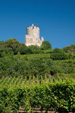 Castelo de Kaysersberg, Alsácia Fotografia de Stock