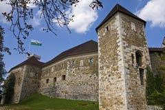 Castelo de Ljubljana Foto de Stock Royalty Free