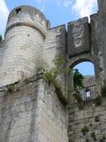 Castelo de Loches (France) Imagem de Stock Royalty Free