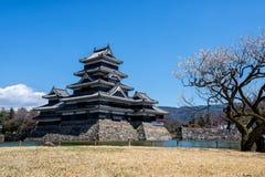 Castelo de Matsumoto, Nagano, Japão Imagens de Stock