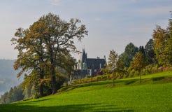 Castelo de Meggenhorn com vinhedo foto de stock