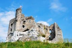 Castelo de Mirow foto de stock royalty free