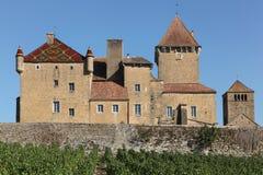 Castelo de Pierreclos em Borgonha foto de stock royalty free