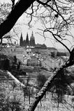 Castelo de Praga, catedral de St Vitus, Praga Foto de Stock