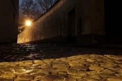 Castelo de Praga - mundo novo Imagem de Stock